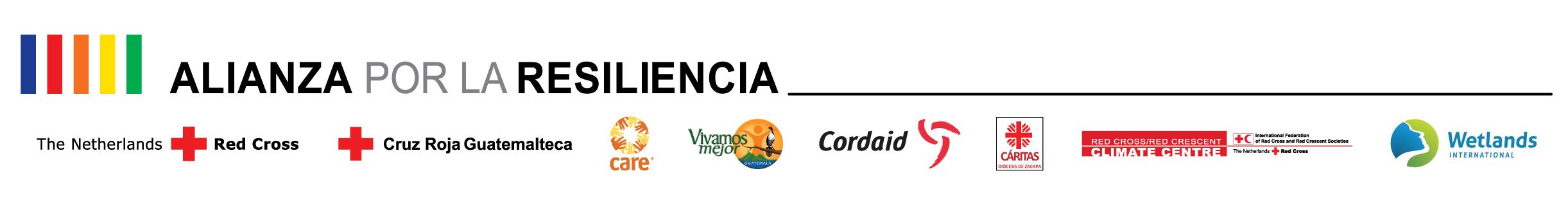 Logotipo Alianza PfR socios globales-04
